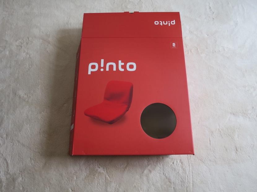 pinto - 1