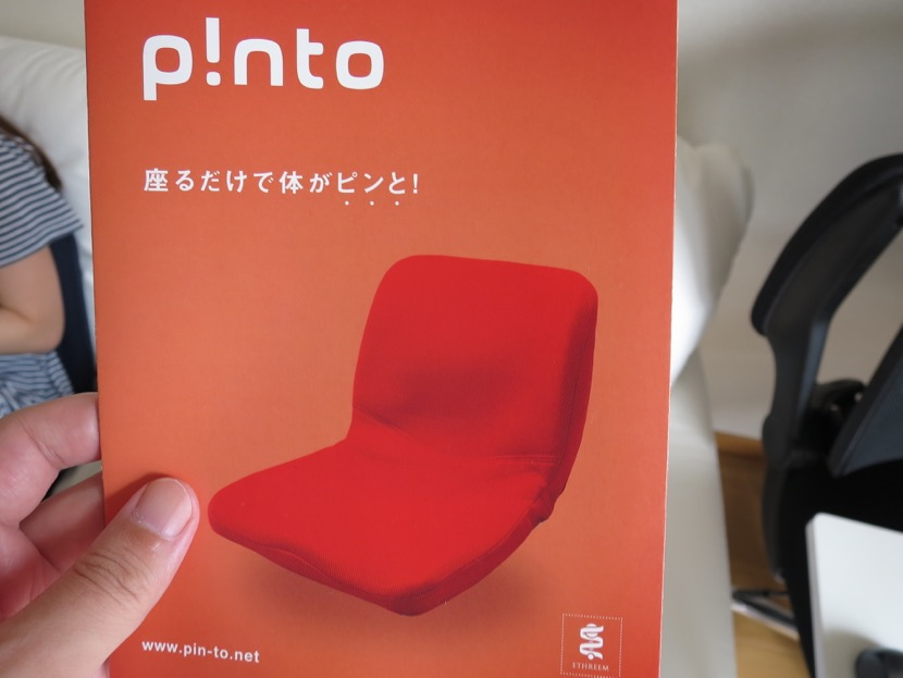 pinto - 5