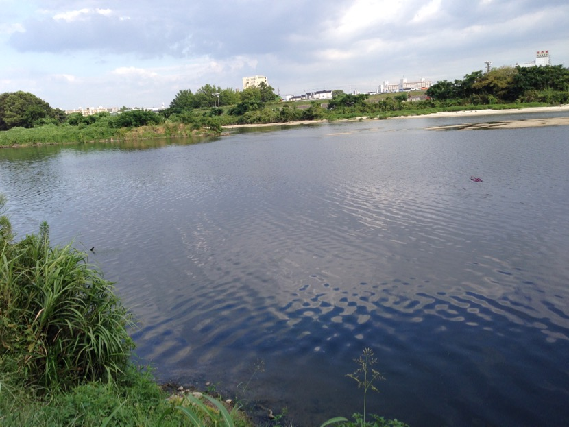 syounaigawabas - 1