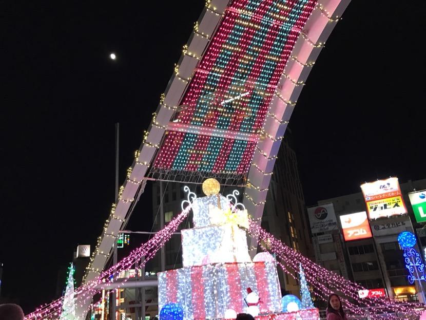 toyohashisirumi-2